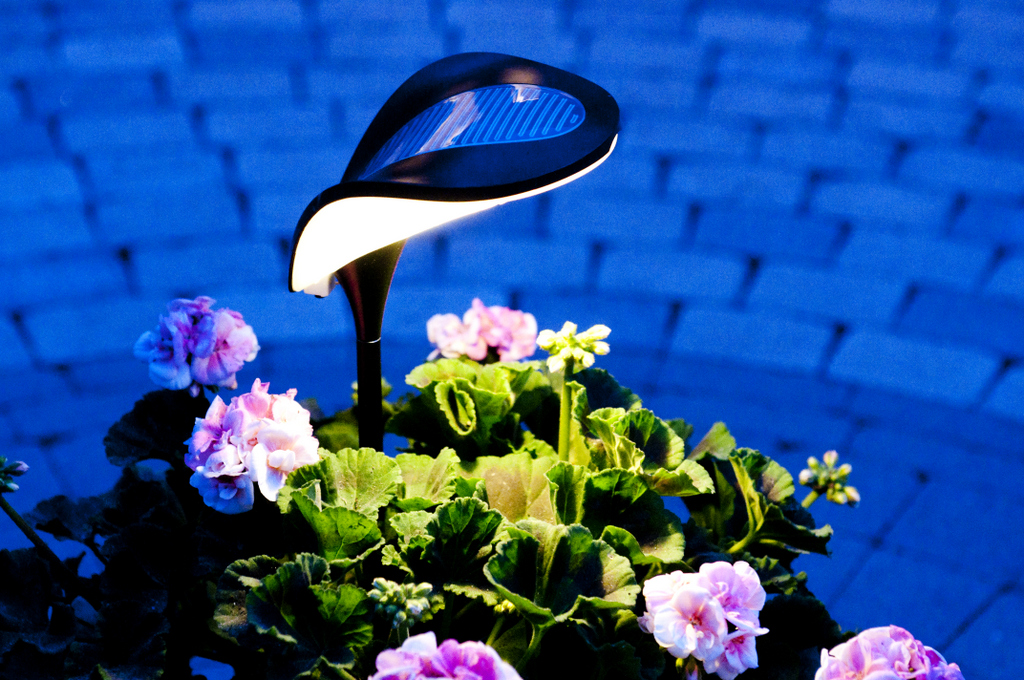 RAY SOLAR POWERED LAMPS