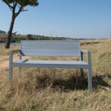 Evaglade Bench 2 str with back in bush